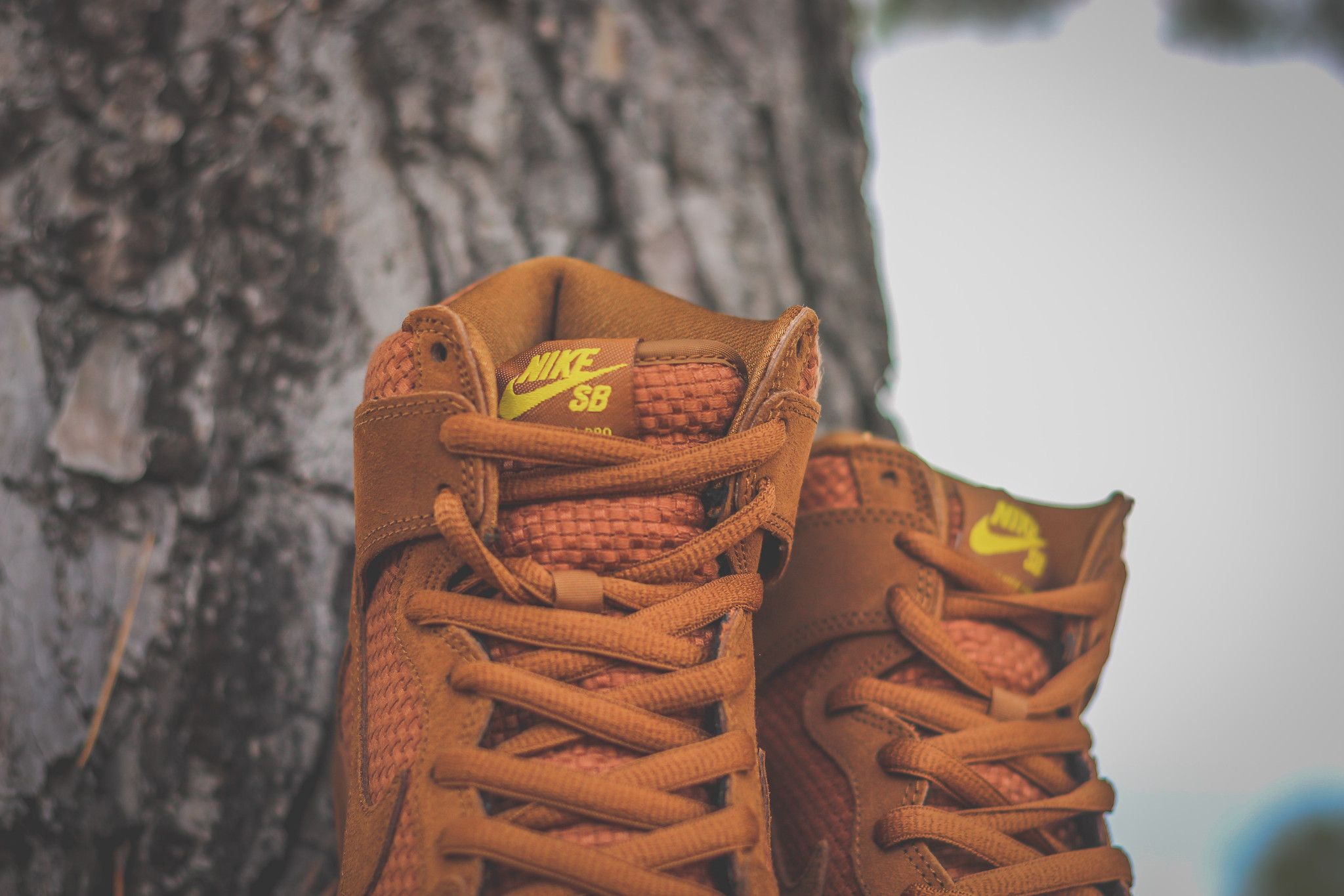 """Nike SB Dunk High """"Ale Brown"""" - Air 23 - Air Jordan Release Dates ... e021f82b7c6c"""