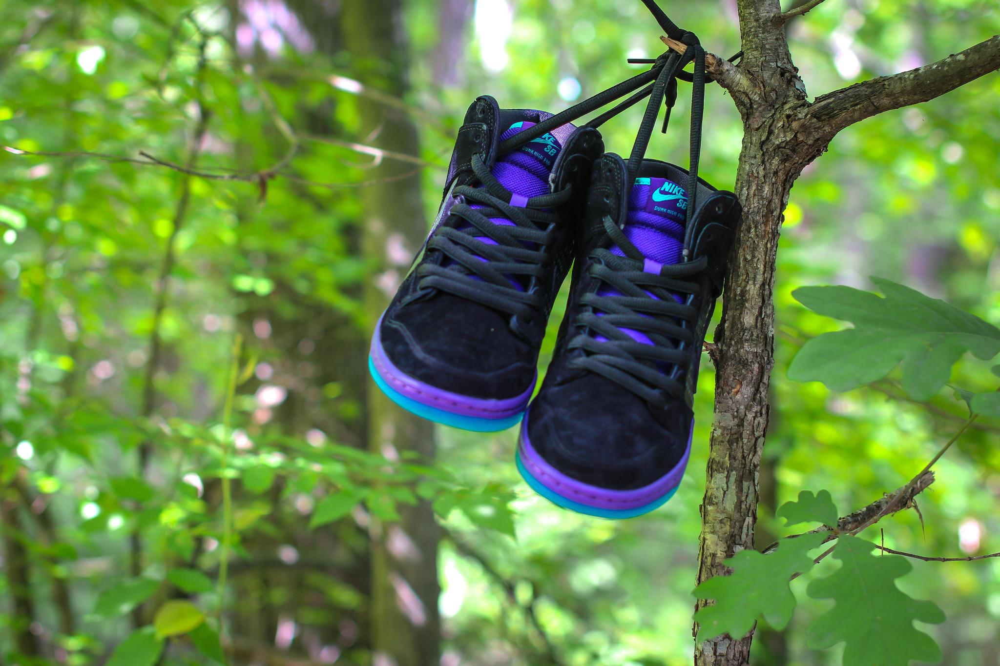 a686d541a0e8 Nike Dunk High Premium SB
