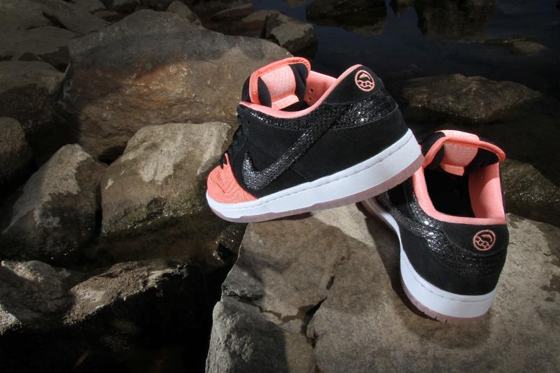 80af2196edd7 Premier x Nike SB